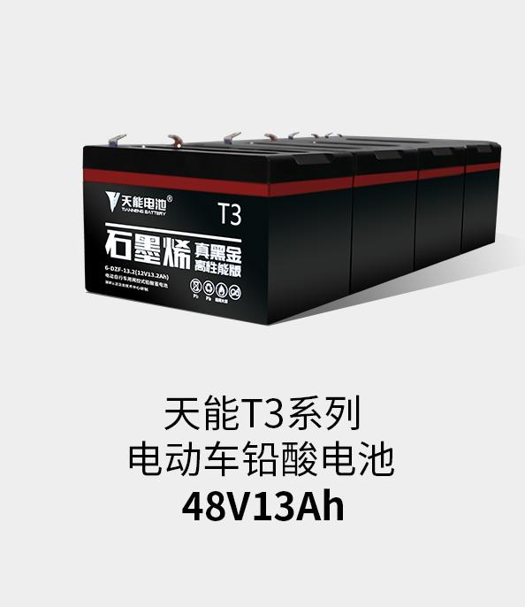 tian能锂电池48v20ah