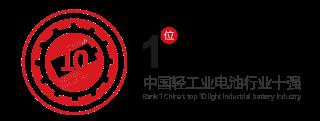 天能集团 中国轻工业电池行业十强第1位
